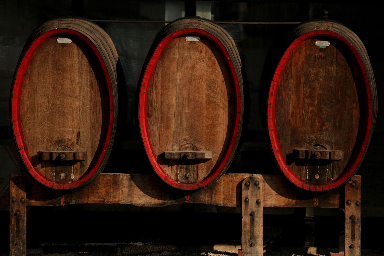 Best wine Zagreb region, Croatia