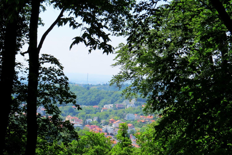 Mountain Bike Tour Zagreb, Medvednica NP, Croatia