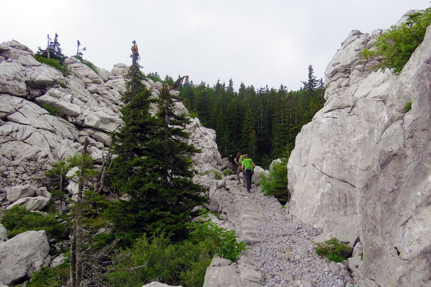 Hiking Tour North Velebit National Park, Croatia