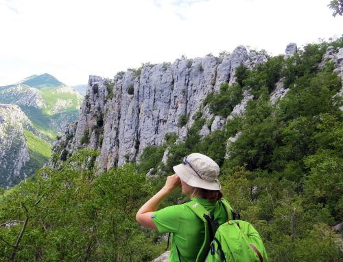 HIKING ADVENTURE IN PAKLENICA NATIONAL PARK