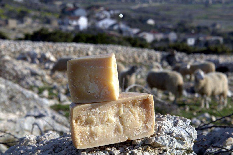 Cycling Pag Island Croatia, Pag cheese
